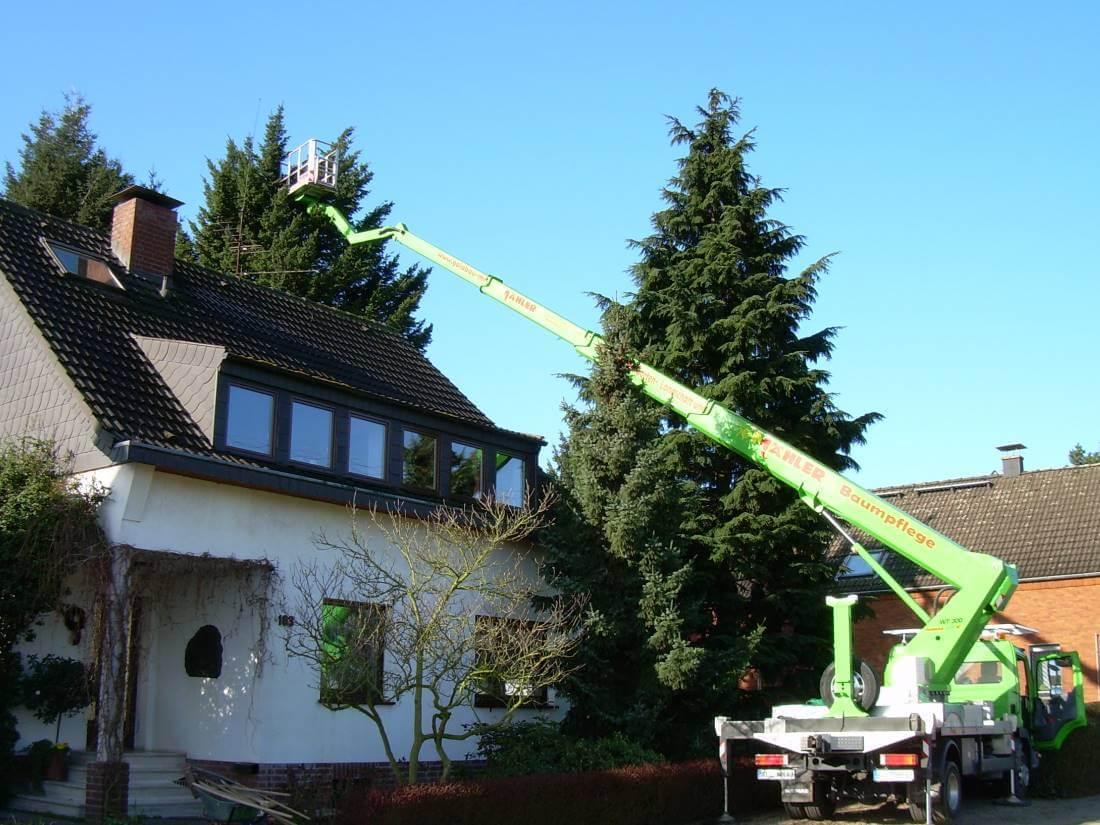 Baumpflegearbeiten Kleve