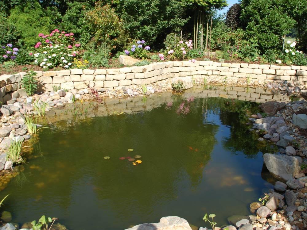 Gartenteich galabau m hler naturteich for Gartenteich gestalten