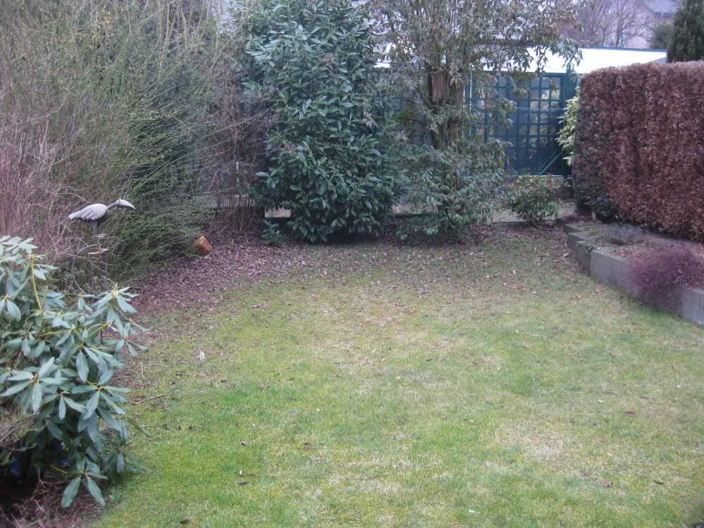 Kleiner Garten vor dem Beginn der Umgestaltung