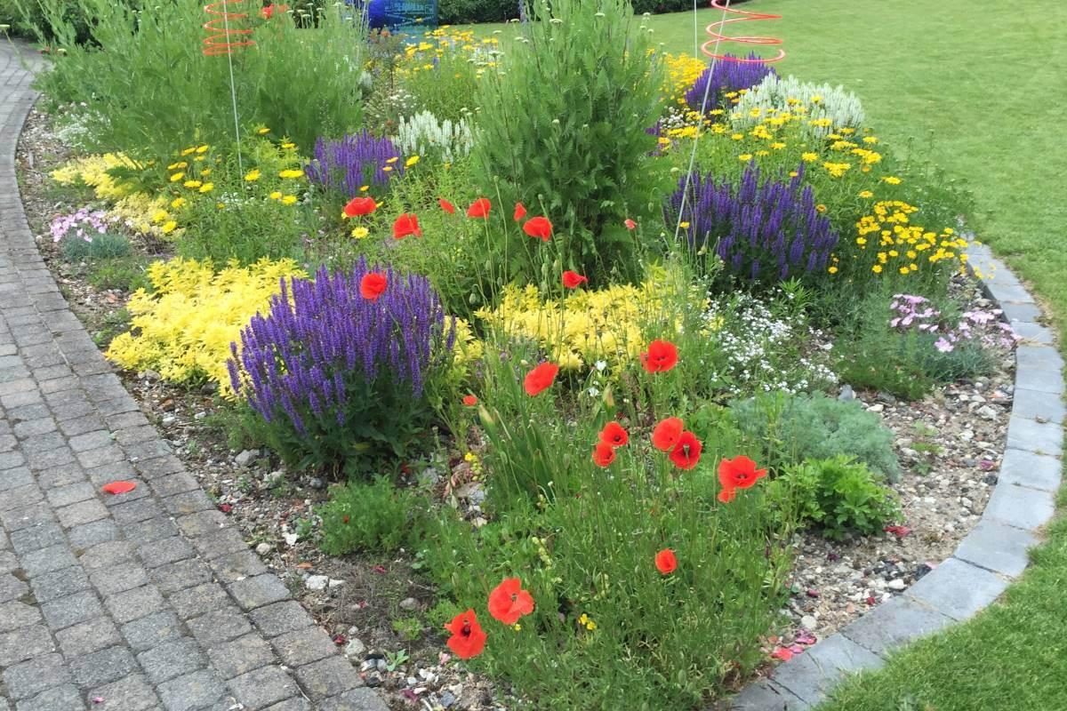 blumenwiese | galabau mähler | kräuterwiese | traumgarten, Gartengerate ideen