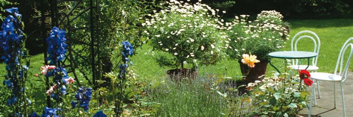 Ausbildung Garten Und Landschaftsbau Traumgarten